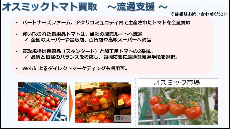 オスミックトマト買取支援